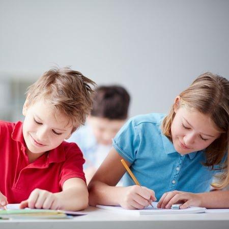 Профилактика и коррекция нежелательных форм поведения школьников на основе функциональной оценки поведения (FBA)